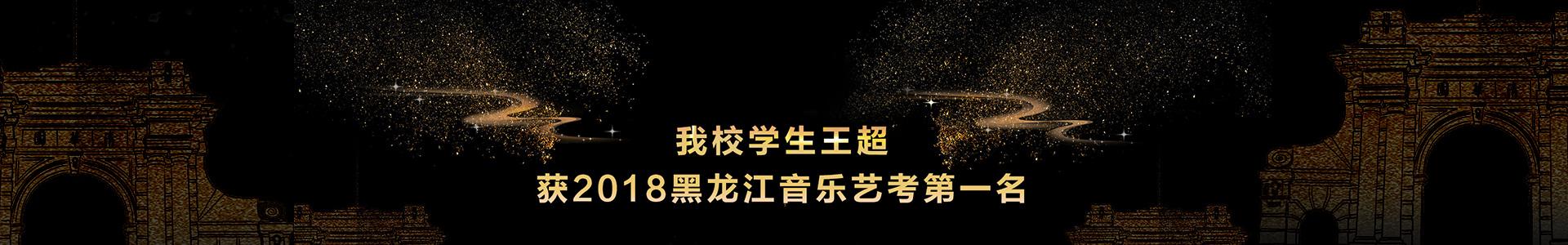 哈尔滨艺考培训